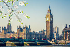 Big Ben in London at spring. Big Ben and westminster bridge in London at spring Royalty Free Stock Photography