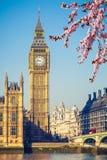 Big Ben in London at spring. Big Ben and westminster bridge in London at spring Stock Image