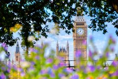 Big Ben,, London UK. View from a public garden with flowers and trees Stock Image