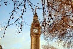 Big Ben mit Bäumen Lizenzfreies Stockbild