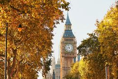 Big Ben in sunny autumn day Royalty Free Stock Photography