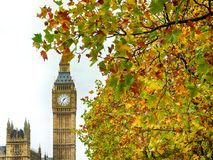 Big Ben surrounding by Autumn leaves. View of the Big Ben from across the River Thames Stock Image
