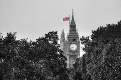 Big Ben-Uhr gegen Bäume in London, England, Großbritannien Lizenzfreie Stockfotografie