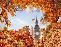 Big Ben-Uhr gegen Herbstlaub in London, England, Großbritannien Stockbild