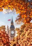 Big Ben-Uhr gegen Herbstlaub in London, England, Großbritannien Stockbilder