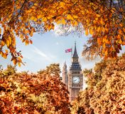 Big Ben-Uhr gegen Herbstlaub in London, England, Großbritannien Lizenzfreie Stockfotografie