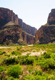 Big Bend National Park Royalty Free Stock Photo