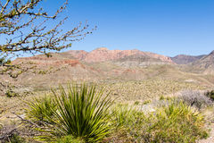 Big Bend View of mountains. A view of the mountains in Big Bend National Park, Texas Stock Photo