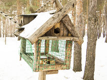 Big bird feeders. In the winter in the woods, feeding trough for animals stock photos