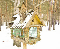Big bird feeders. In the winter in the woods, feeding trough for animals stock photo