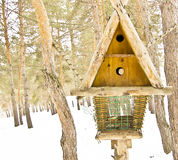 Big bird feeders. In the winter in the woods, feeding trough for animals royalty free stock photography