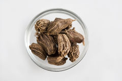Big Black Cardamom Royalty Free Stock Images