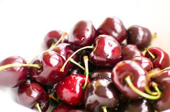 Big black cherries called Duroni typical from Vignola italy whit Royalty Free Stock Image