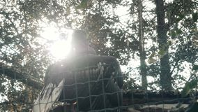 Big Black Eagle In Huge Cage Intended For Resting. Bird In Captive. 4K stock footage