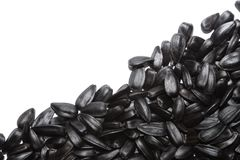 Big black seeds Stock Photo