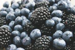 Big blackberries and fresh blueberries Stock Images