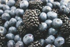 Big blackberry and fresh blueberries Stock Image