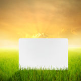 Big blank paper in Rice fields and Sunset for backgrounds Royalty Free Stock Photography