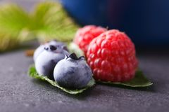 Big blue blueberries and raspberries on slate stone. Horizontal photo with several summer berries as big blue blueberries and red raspberries on green leaves Stock Photography