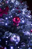 Big blue christmas tree in the park in the night Stock Photo