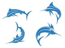 Big blue marlins Royalty Free Stock Images