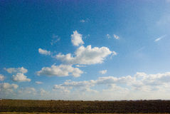 Big Blue Texas Country Sky. A view of the Texas country horizon across a corn field Stock Photo