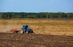 Big blue tractor plows the field and removes the remains of previously mown sunflower. Royalty Free Stock Image
