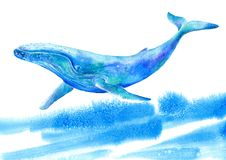 Big Blue Whale and wave .Watercolor hand drawn illustration. Underwater animal art. White background vector illustration