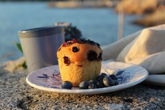 Big blueberry muffin Royalty Free Stock Photography