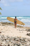 Big board, small girl. Girl carries a large surfboard across the shoreline stock photos