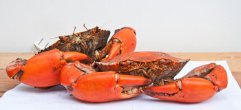 Big Boiled crab Stock Photography