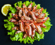 Big boiled shrimps and lemon on green lettuce. Black stone background Stock Images