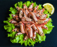 Big boiled shrimps and lemon on green lettuce. Black stone background, top view Stock Photography