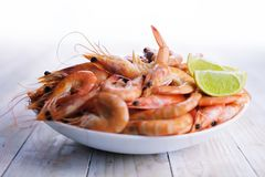Big boiled shrimps in white plate stock images