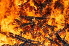 Big bonfire closeup, red fire flames Royalty Free Stock Photography