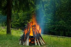Big bonfire in the forest Royalty Free Stock Images