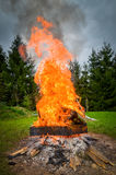 Big bonfire in the nature Stock Image