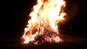 Big bonfire, night. A huge fire on a dark background.The sound of fir.Huge bonfire. Accelerated video.