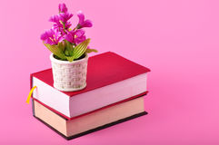 Big book. A hard cover big red book with flower pot Royalty Free Stock Photo