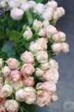 Creamy white rose boquet. Big boquet creamy white roses for presents royalty free stock photo