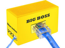 The big boss is always right. Humor concept with internet patch cables. Isolated on white Stock Photo