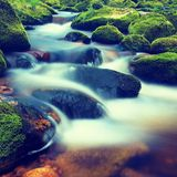 Big boulders covered by fresh green moss in foamy water of mountain river. Light blurred cold water with reflections, white whirlp Royalty Free Stock Photo