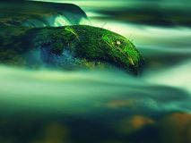 Big boulders covered by fresh green moss in foamy water of mountain river. Light blurred cold water with reflections, white whirlp Stock Photo