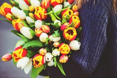 Big bouquet of colorful tulips Royalty Free Stock Photos