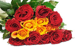 Big bouquet pretty roses Royalty Free Stock Image