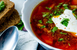 Big bowl of borscht with sour cream and herbs Stock Image