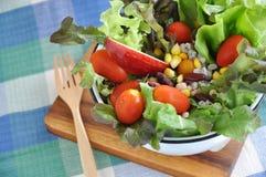 Big Bowl of Fresh Salad Royalty Free Stock Photography