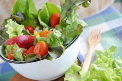 Big Bowl Healthy Salad Stock Photo