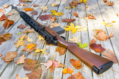 Big boy toy. Picture of a rifle surrounded by leaves Stock Photography