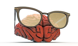 Big brain with black glasses Stock Image